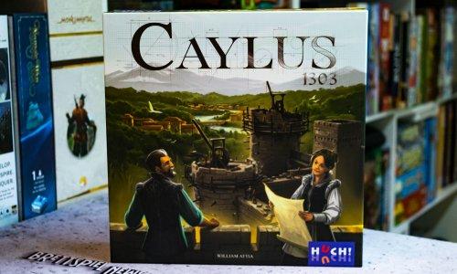 TEST // CAYLUS 1303