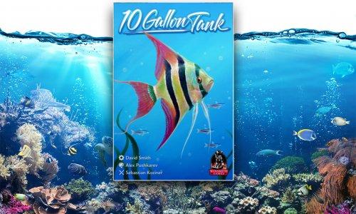 10 GALLON TANK // Herbstneuheit für Aquarienliebhaber